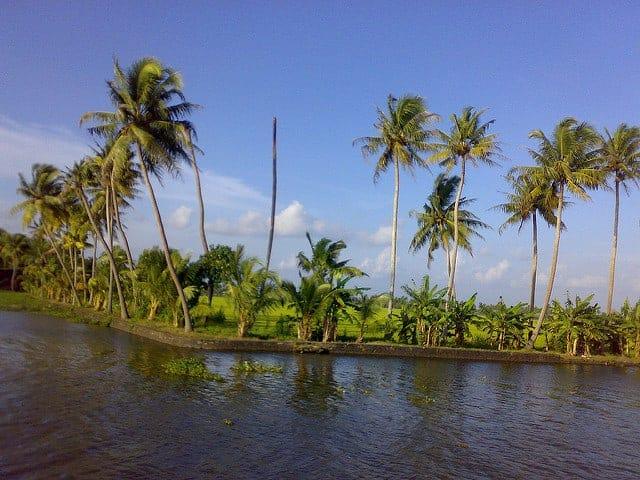 Backwaters of Kumarakom