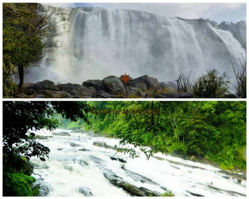 Kochi to Athirapally and Vazhachal Waterfalls (1 day) 1