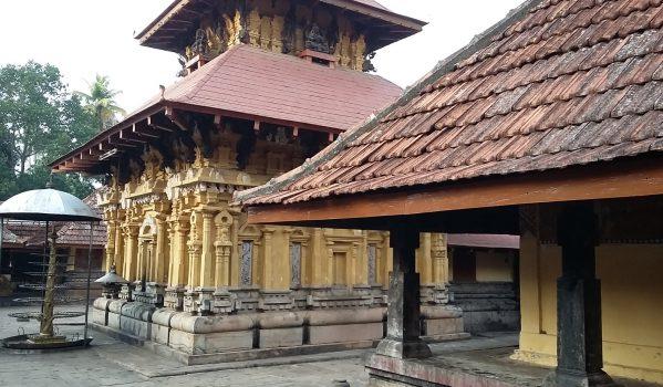 Stone Carvings at Thiruvanchikulam Mahadeva Temple