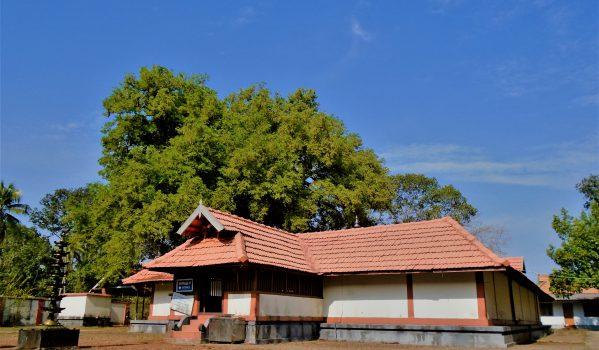 Landscape view of Adithyapuram Surya Temple